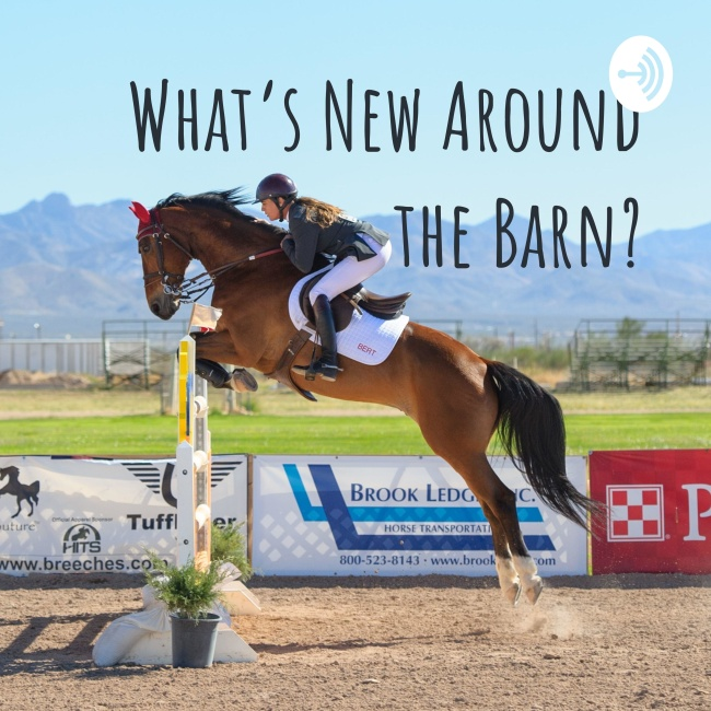 What's New Around the Barn